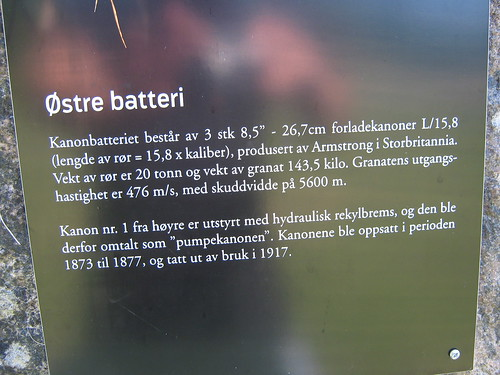 Oscarsborg Festning (68)