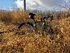 2016 Bike 180: Day 229 - Remnants