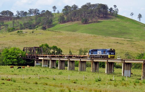 Pacific National locomotive 8215 brings an empty railset train #6M44 across the Avon River floodplain at Gloucester, NSW