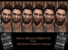 New Beard Bento for ADAM mesh head