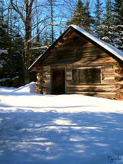 Winter Cabin 2006