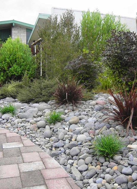 Landscaping With New Zealand Native Plants Bark path through the