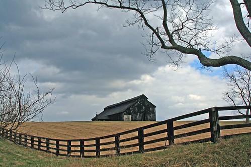 sky tree topf25 beautiful topv111 topv2222 barn fence landscape topv555 topv333 lexington kentucky topv1111 topv999 100v10f creativecommons topv777 tobacco fayettecounty jackscreekpike