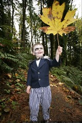 jack and the giant leaf