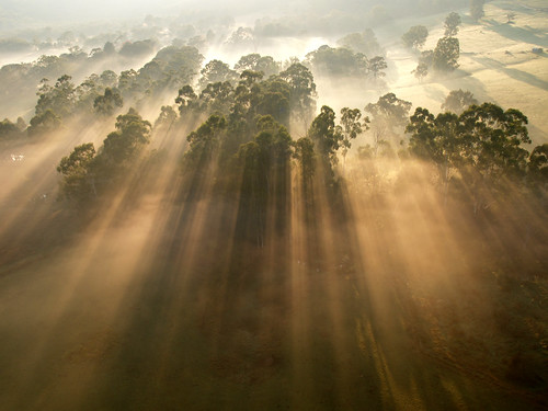 Morning mist | by steve_lacy941
