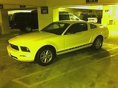 stock car racing(0.0), automobile(1.0), automotive exterior(1.0), boss 302 mustang(1.0), wheel(1.0), vehicle(1.0), automotive design(1.0), rim(1.0), bumper(1.0), ford(1.0), classic car(1.0), land vehicle(1.0), muscle car(1.0),