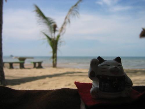 thailand, ko samui, lamai IMG_1109.JPG