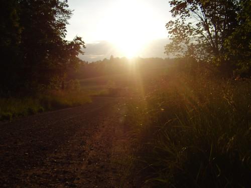 sunset ohio landscape dusk mrcardboard