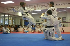 striking combat sports, hapkido, individual sports, contact sport, taekwondo, sports, tang soo do, combat sport, martial arts, karate,