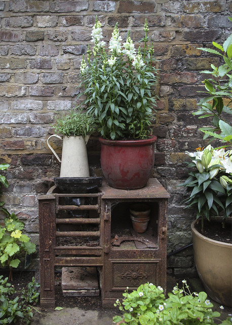 Spitalfields Gardens Group - garden2