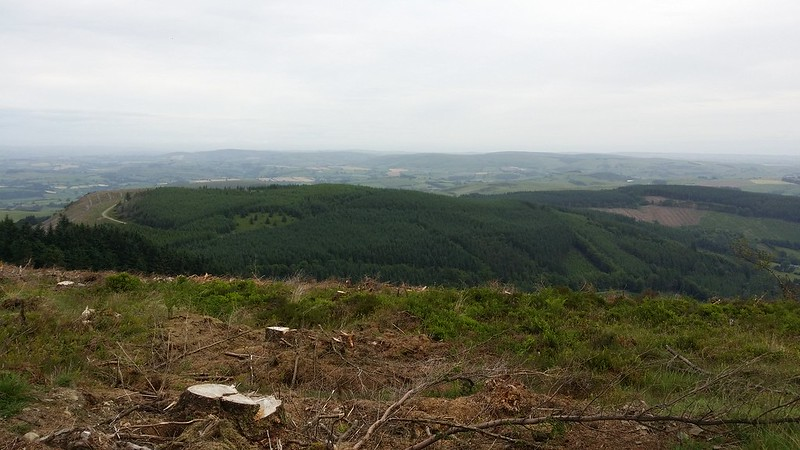 Looking down to fron-wen #sh