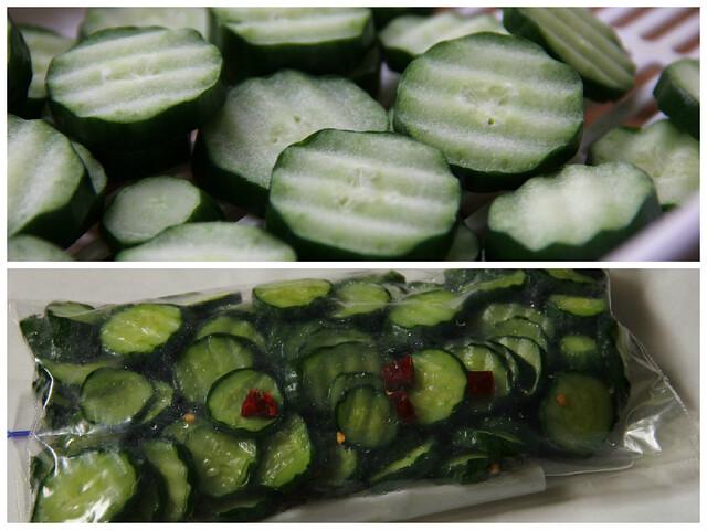 Pickle_KyuriKonbucya_3