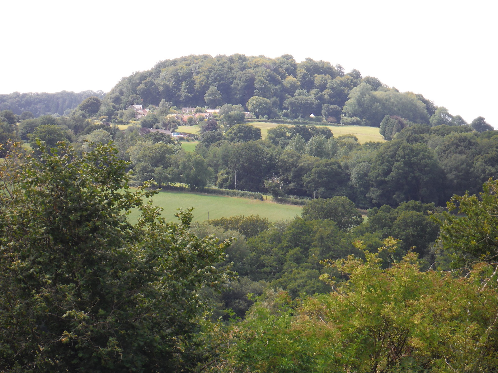 Barker's Hill from above Donhead St. Andrew SWC Walk 252 Tisbury Circular via Donhead St. Andrew