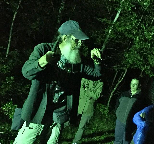 Detecting bats