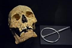 Viking exhibition in Tallinn, Estonia