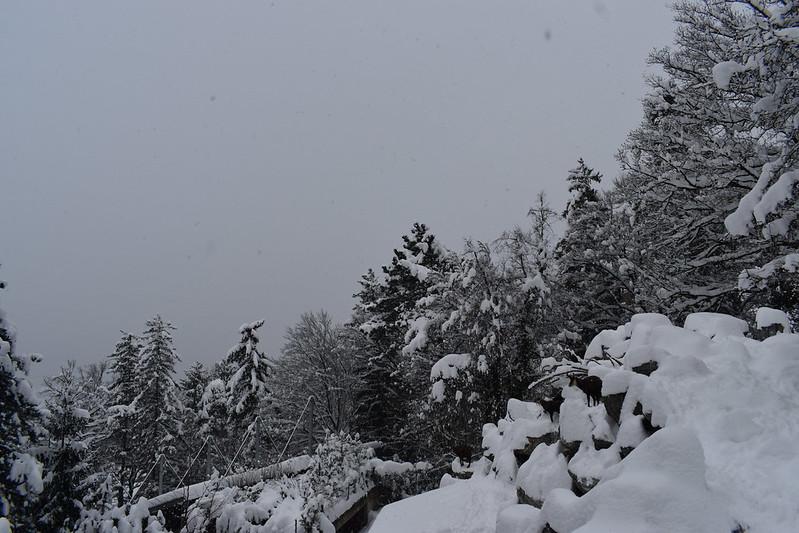 08/01 Innsbruck