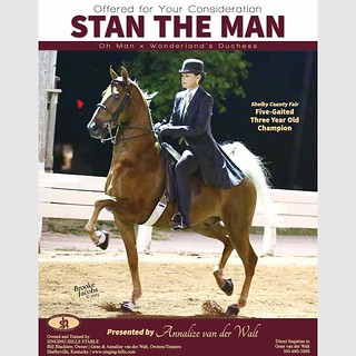 Stan the Man - shelby county