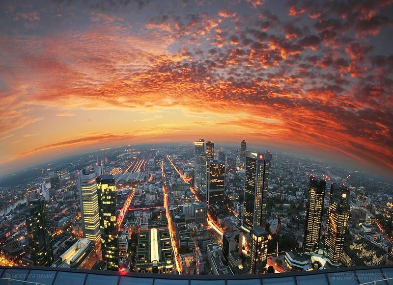 Above the Skyline