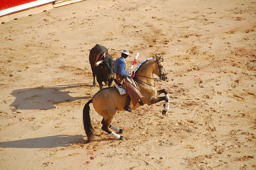 Bullfight Pamplona Spain