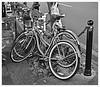 Dos Bicicletas (Two Bicycles)