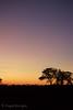 Delta Sunset by MeganKarine