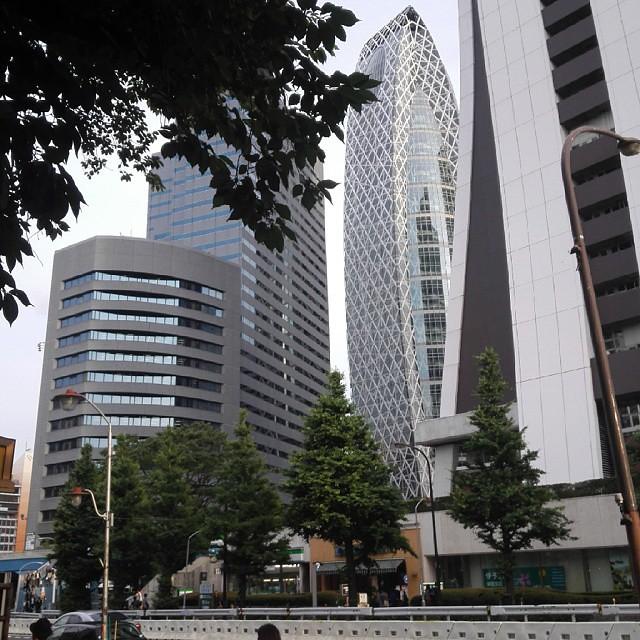 Shinjuku   #igdaily #igersjp #instagramhub #instagood #mine #like #follow #ignation #l4l #instagramlove #tagsforlikes #love #instadaily #instalove #instalike #instafollow #nofilter #japan #日本 #travel #vacation #holiday #新宿