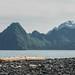 Kenai Fjords National Park near Bear Glacier by alexander.howard11
