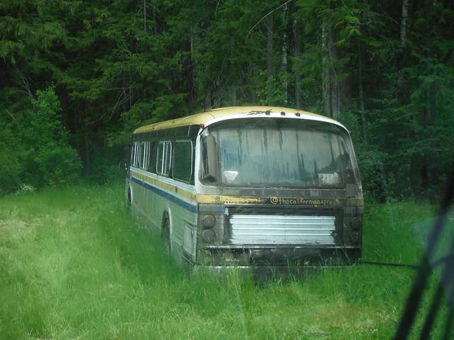 66 bus