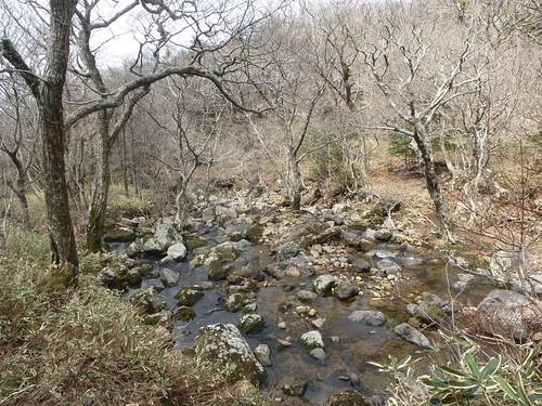 Co-Jejudo-Hallisan-Montée-Yeongsil (2)