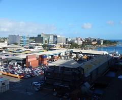 Suva (49)