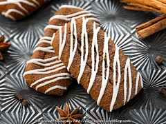 Gingerbread Bars w/ White Chocolate Drizzle