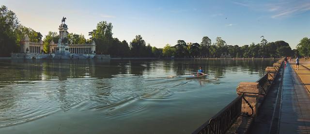 Remo en el estanque del Parque Retiro, morning (2016)