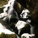 waterfall by derbaum