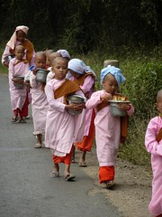 young nuns on the road, Shan State
