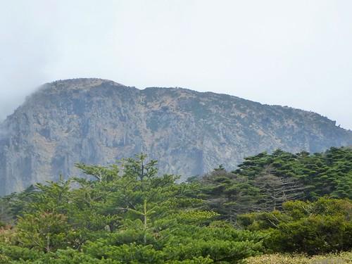 Co-Jejudo-Hallisan-Montée-Yeongsil (29)