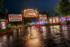 Rainy Night Circus