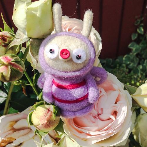 flowers, 2014 -15 -