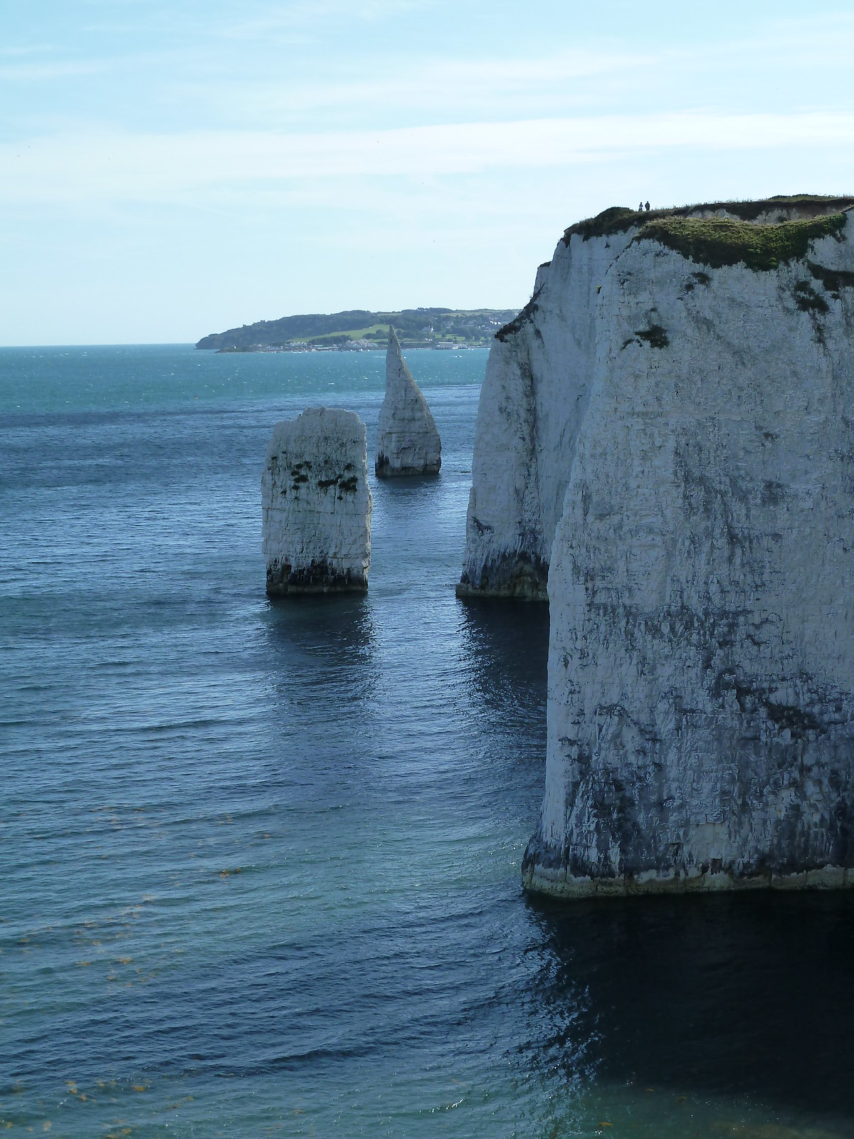 photo from walk West from Old Harry