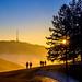 Sunny winter afternoon... by der LichtKlicker
