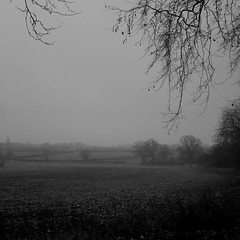 F in Fog