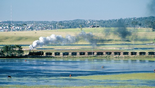 SMR23 crosses the Hexham Swamps at