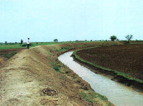 लापोड़िया गाँव में पानी से लौटी हरियाली