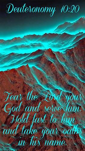 Deuteronomy 10:20 NIV