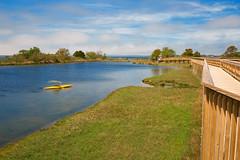 Assateague Island Marsh