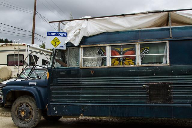 Blue Butterfly Bus