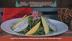 Food at El Texano Mexican Restaurant in The Bronx