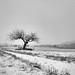 Winter Retreat winter stories