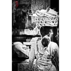 Balinese Woman #Bali #woman #traveling #travelgram #bnw_captures #balinese #blackandwhitephotographylovers #monochromephotography #history #monochrome #bnw_magazine #travelgram #travel #bw_divine #travelblogger  #indahs_monochrome #indahs_photography