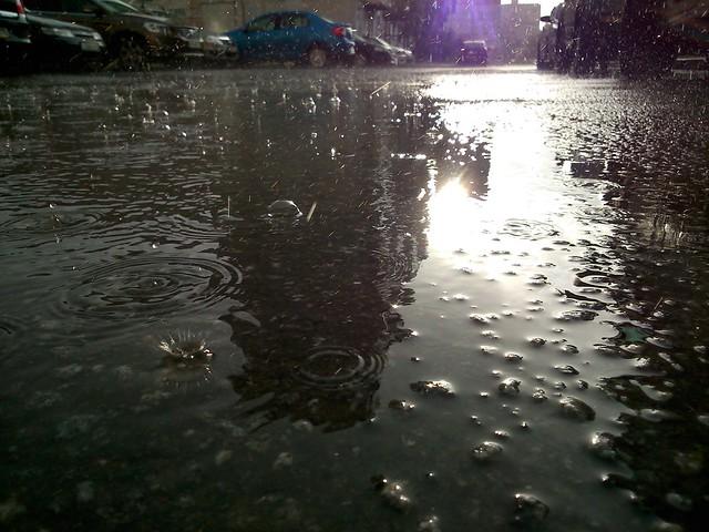 Дождь // Rain