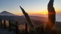 El teide / Sunset